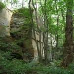 Im Naturschutzgebiet Köpfertal