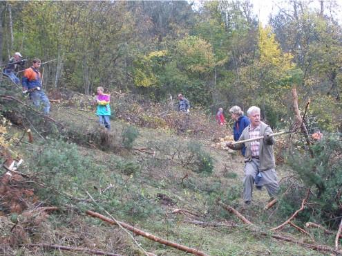 Landschaftspflegemaßnahme beim Schwäbischen Albverein