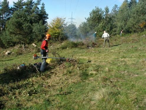 Freischneidearbeit bei Landschaftspflegemaßnahme