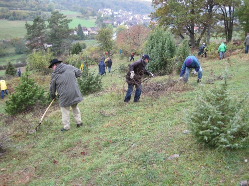 Bei der Landschaftspflege