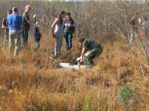 Teilnehmer des Freiwilligen ökologischen Jahres beim Landschaftspflegeeinsatz ind NSG Schwenninger Moss