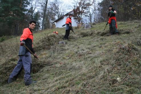 Beim Freiwilligendienst im Schwäbischen Albverein