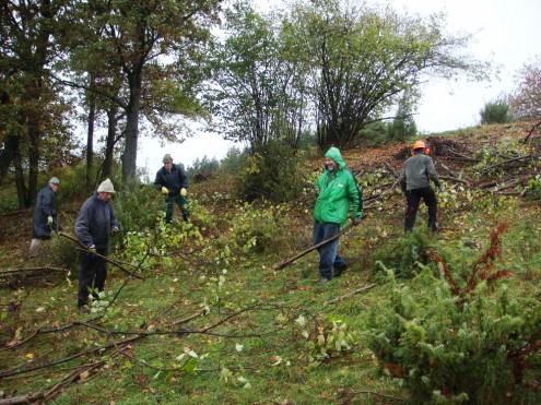 Landschaftspflegeeinsatz bei Aldingen-Deufringen