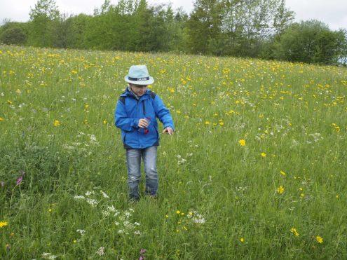 Blumenwiesenfest 17, Kind, Foto: Katharina Heine